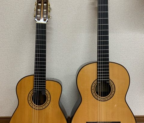 アルトギター (黒澤澄雄)
